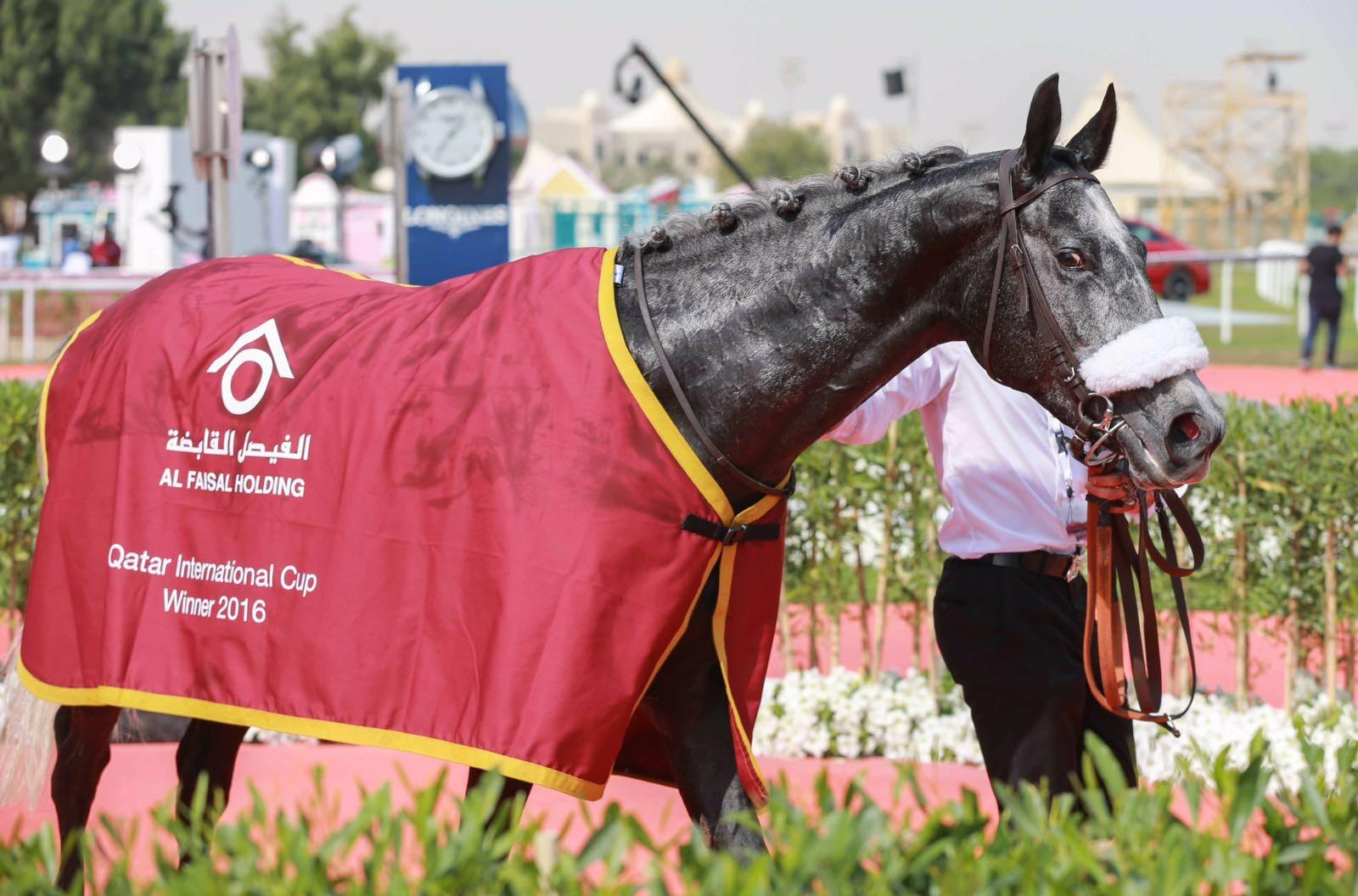 Aba'ath Doha 2016 Winning Enclosure